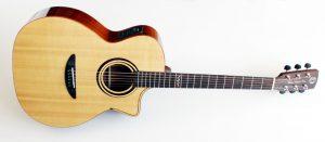 DCTギターはG-310CE他、コンパクトボディのFシリーズ、Vシリーズ等を展示予定です。 発売以来着実にファンを増やしているDCTギターを是非チェックしてみて下さい。